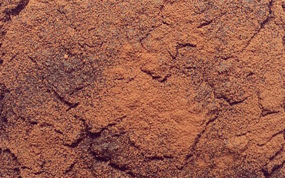 Gâteau de quinoa au chocolat