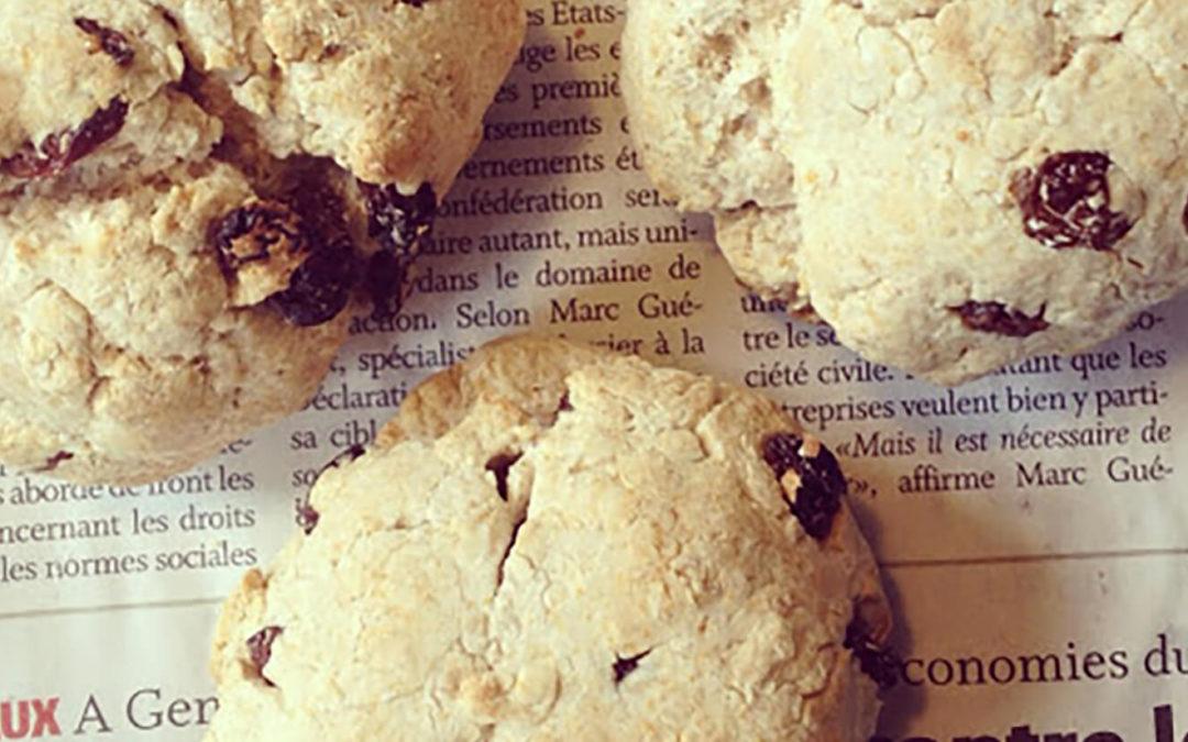 Scones okara & raisins secs